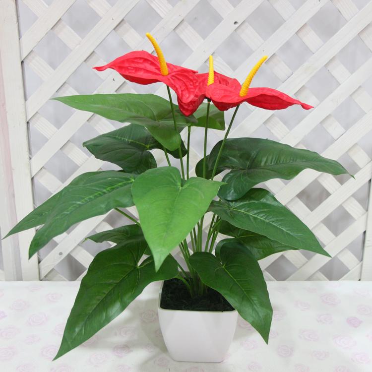 纸箱手工制作植物