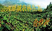 山西绛城农林生态合作社