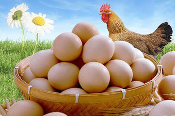 端午节前鸡蛋市场机会在哪?