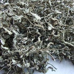 供应 野生润喉藤茶