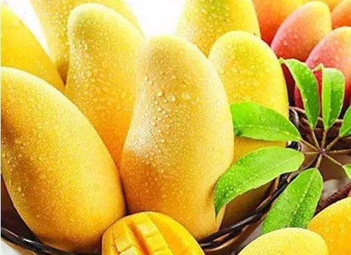 芒果有一股独特的香味