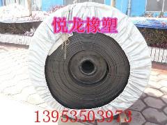 悦龙牌尼龙13Mpa耐磨材质输送带,挡边带
