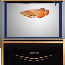 超白玻璃龙鱼缸大型中型生态水族箱底滤下过滤1.2米1.5米