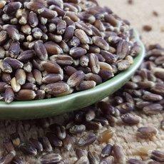 可溯源黑麦每吨3800