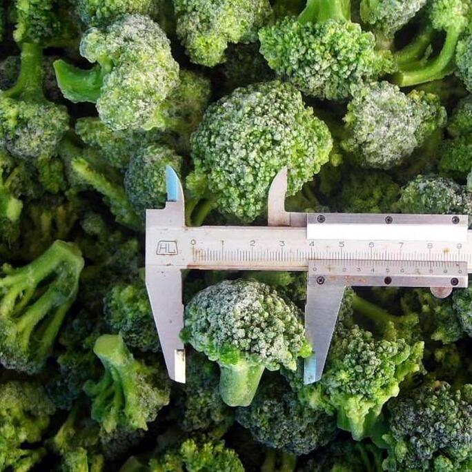 供应  冷冻绿花菜 价格优惠