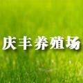 6-23 庆丰养殖场logo