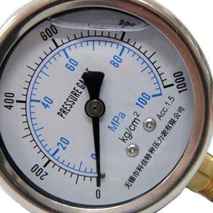 耐震压力表 充油耐震压力表 带边耐震压力表 耐震压力表价格 耐震压力表生产厂家