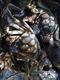 林间有湖牌阳澄湖大闸蟹公蟹3.5两母蟹2.5两4对8只精品型