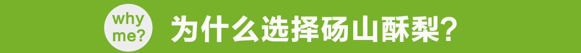 中国梨产业网