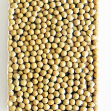 黄豆批发价格 红豆批发厂家 蚕豆供应商 黑豆厂家直销 豌豆批发产地