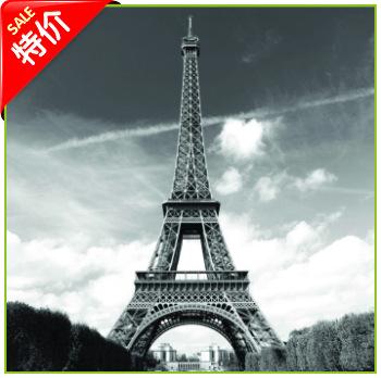 埃菲尔铁塔欧美创意大版平网涤纶浴帘外贸
