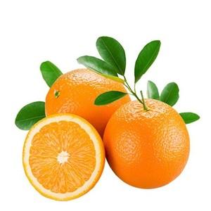 厂家热销 原生态江西赣南脐橙20斤精品装 品质保证欢迎咨询