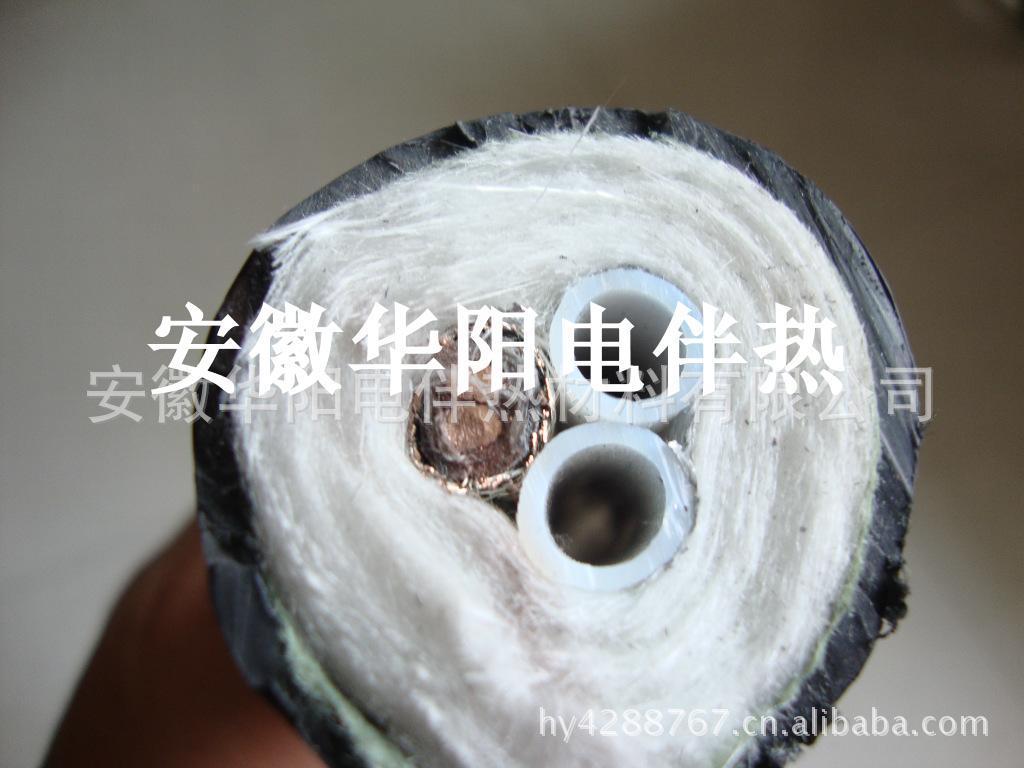 安徽华阳生产伴热管缆CEMS伴热取样样管烟气采样管伴热管缆伴热管