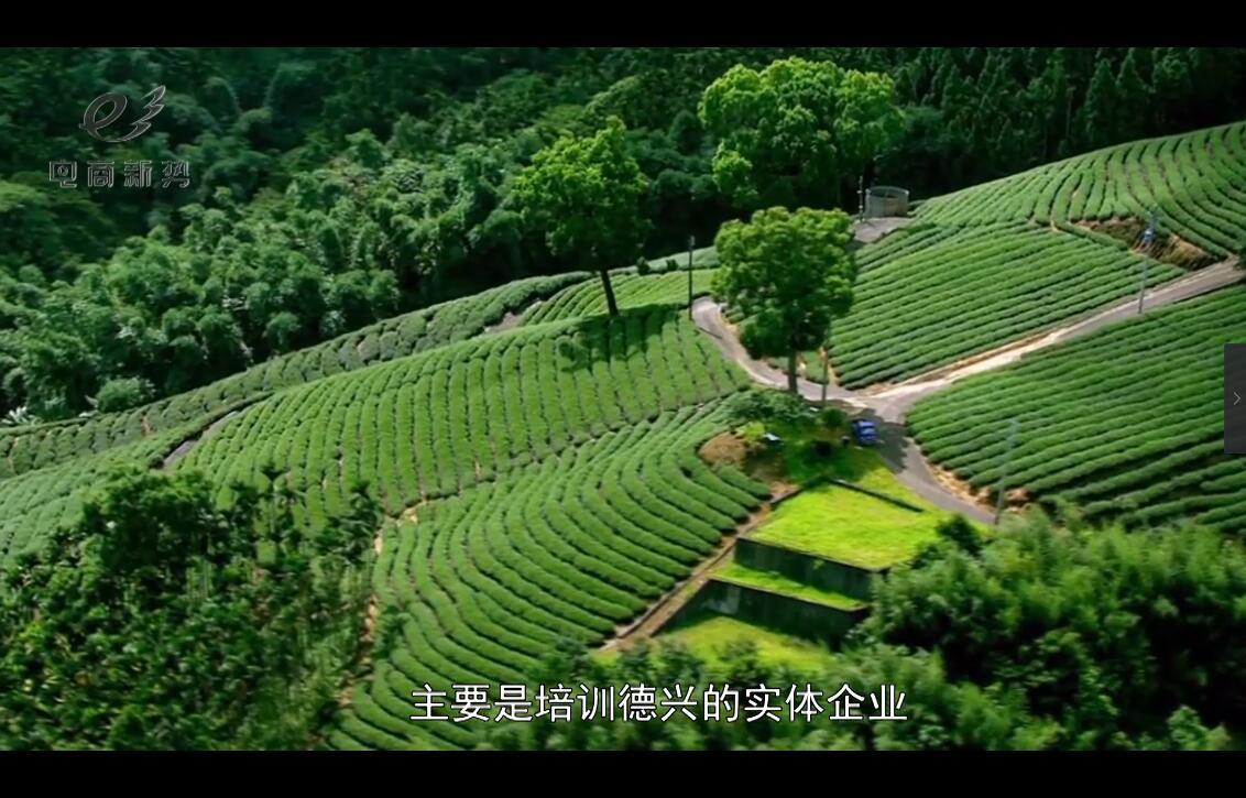 【电商新势】128中国山茶油产业网