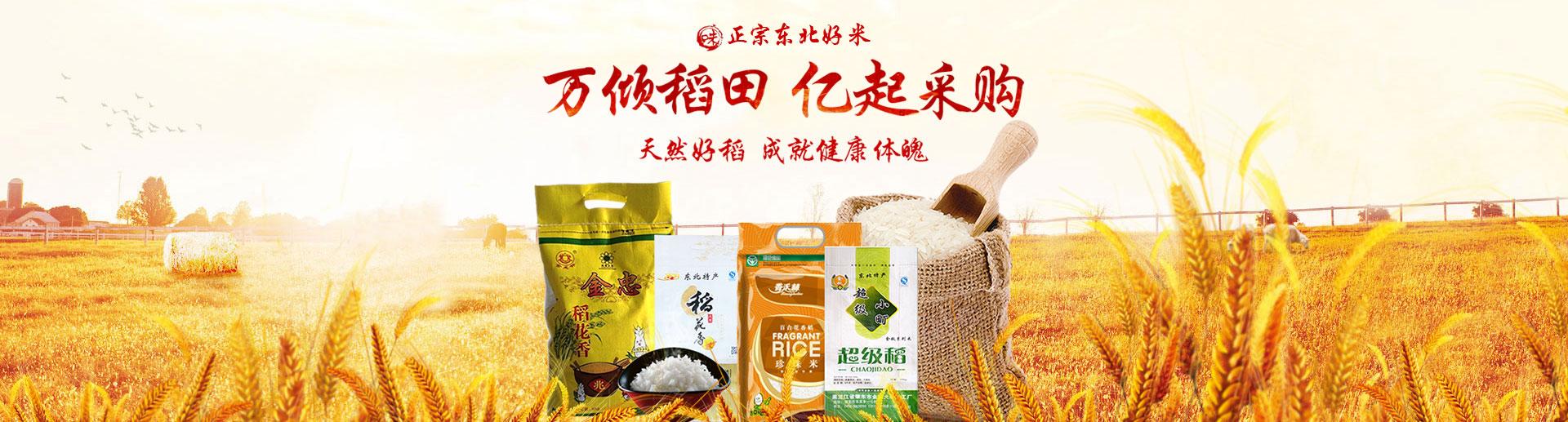 中国大米产业网