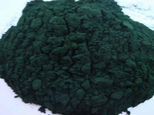 小球藻**小球藻可以预防贫血