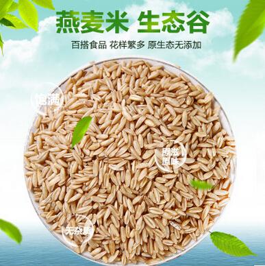 供应 优质燕麦米