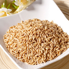 优质低价批发供应优质生燕麦健康五谷杂粮燕麦