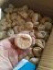 休闲食品土耳其最大无花果批发供应新疆特产散装零食雪阁干果