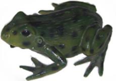 藝星教學廠家供應青蛙雕塑模型 仿真動物 景觀雕塑模型