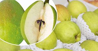 库尔勒苹果梨