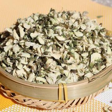 供应 天然槐花茶