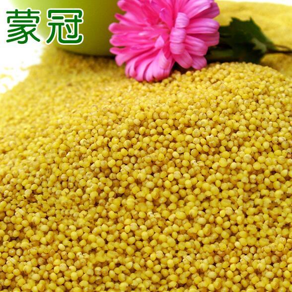 厂家专业承接 健康天然内蒙古小米 优质特色散装小米