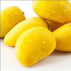 芒果浓缩汁原装进口浓缩果汁厂家直供量大从优