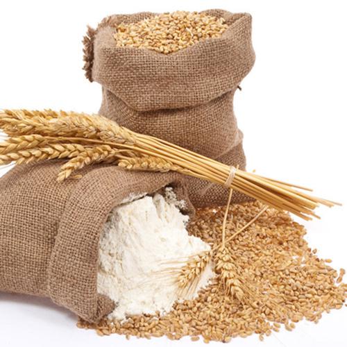 原阳县种植生产销售高质量的小麦