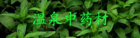 贵州省温泉中药材有限公司