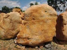供应黄蜡石、黄石头、广东黄蜡石、校园景观黄蜡石