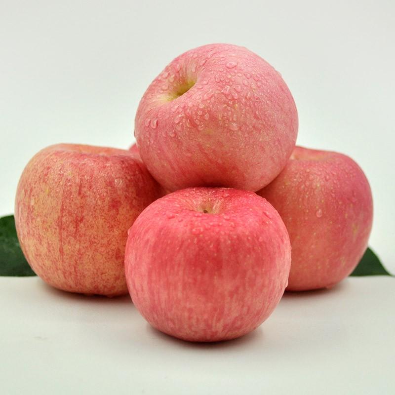 安塞安塔元宝苹果专业合作社