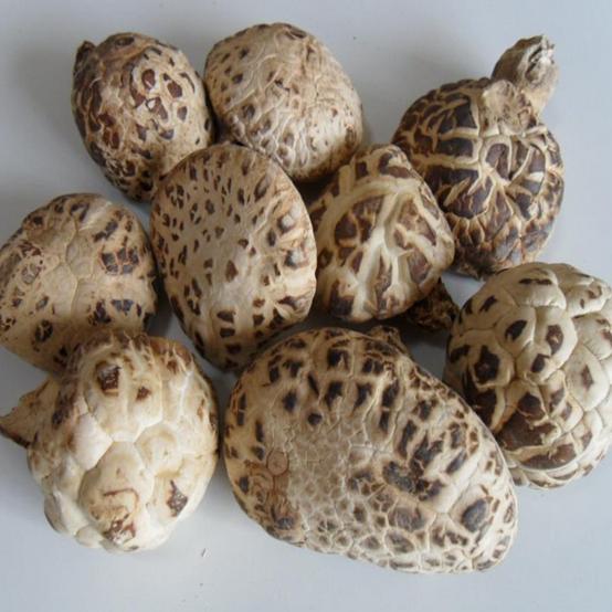 花菇干货古田农家自产新货香菇特级椴木大冬菇新鲜食用菌250g包邮