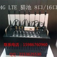 供应8口4G猫池 业界首选  专业猫池设备 包教会送软件