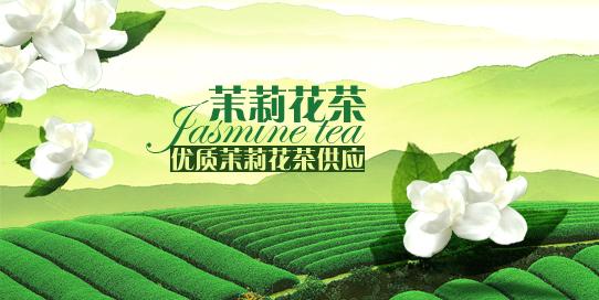 中国茉莉花茶交易网