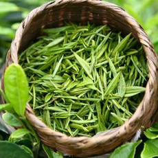 供应咏春牌清沄绿茶180g