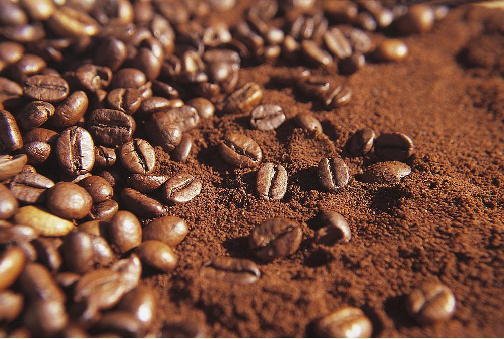 什么!咖啡豆还可以吃?
