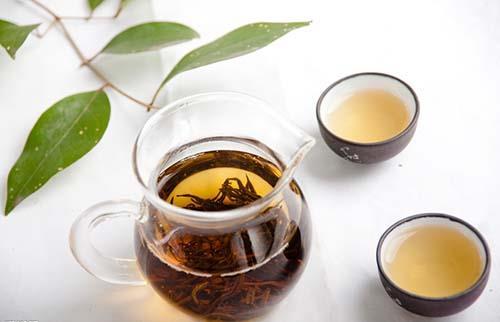 金线莲其实也可以泡茶