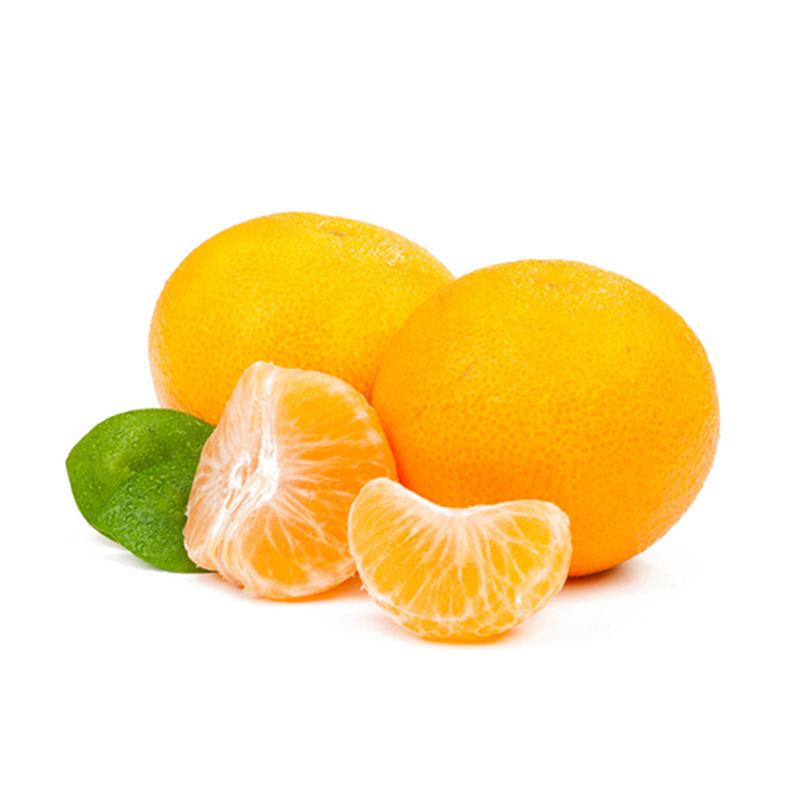 新发地水果批发市场