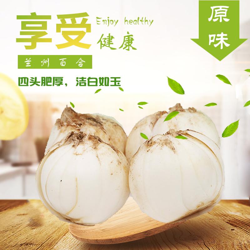 兰州特产 袁家湾  农家自产食用甜百合 新鲜四头皇