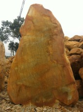 供应大型景观石、黄蜡石、园林石、
