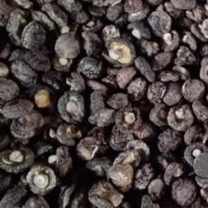 供应 香菇冬菇