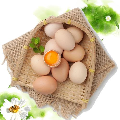 中秋活动价新鲜鸡蛋仁人种养殖营养健康
