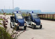 大丰和 品牌三人座电动四轮巡逻车