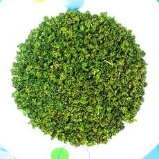 杞蕴 枸杞芽茶