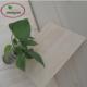 年中大促 大量批发樟子松板 松木板 工艺品板 价格优惠