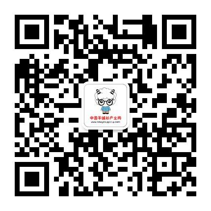 中国羊绒衫产业网