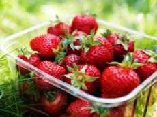 新鲜的草莓,甜宝草莓