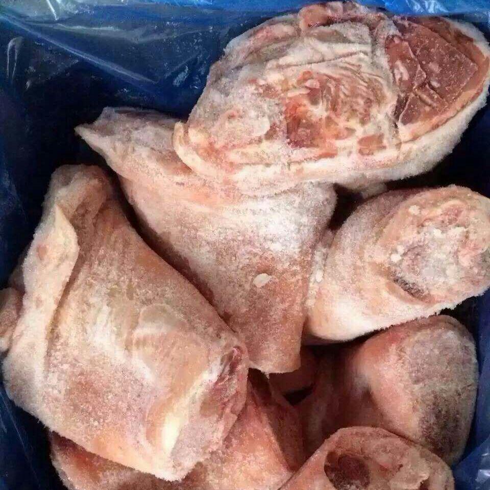 供应 进口加拿大12厂前肘 优质进口冷冻猪肉,长期供应进口猪副等