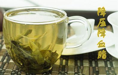 罗布麻茶你了解多少?